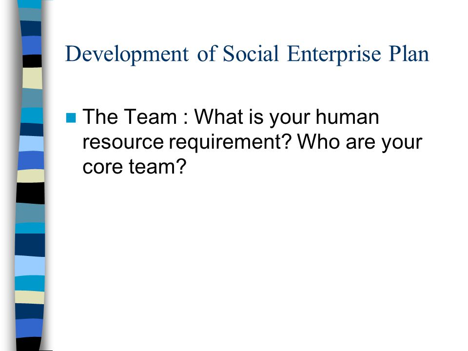 Development of Social Enterprise Plan The Team : What is your human resource requirement.