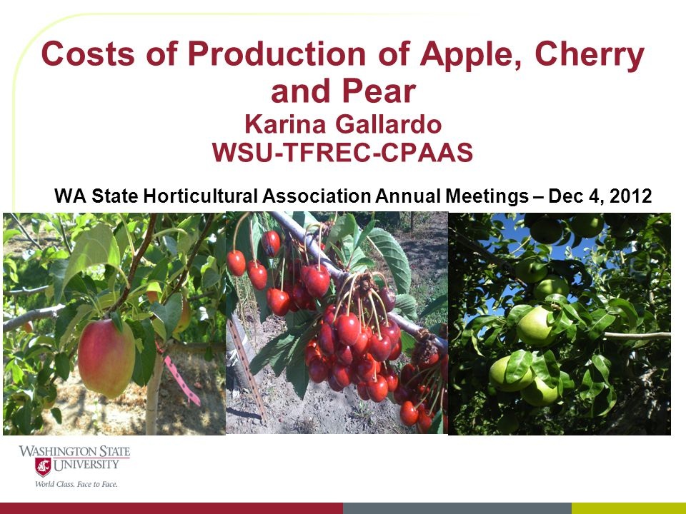 Costs of Production of Apple, Cherry and Pear Karina Gallardo WSU-TFREC-CPAAS WA State Horticultural Association Annual Meetings – Dec 4, 2012