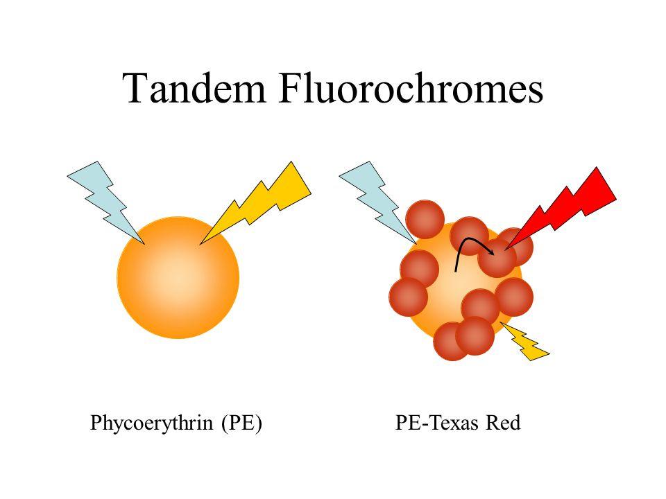 Tandem Fluorochromes Phycoerythrin (PE)PE-Texas Red