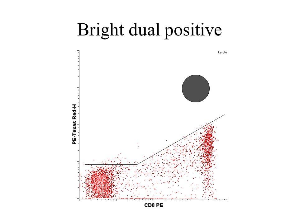 Bright dual positive