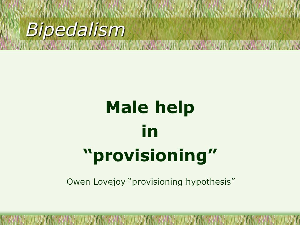 Bipedalism Male help in provisioning Owen Lovejoy provisioning hypothesis