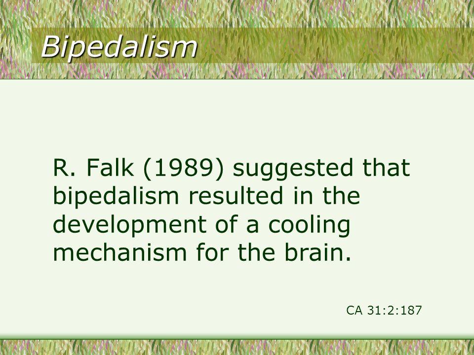 Bipedalism R.