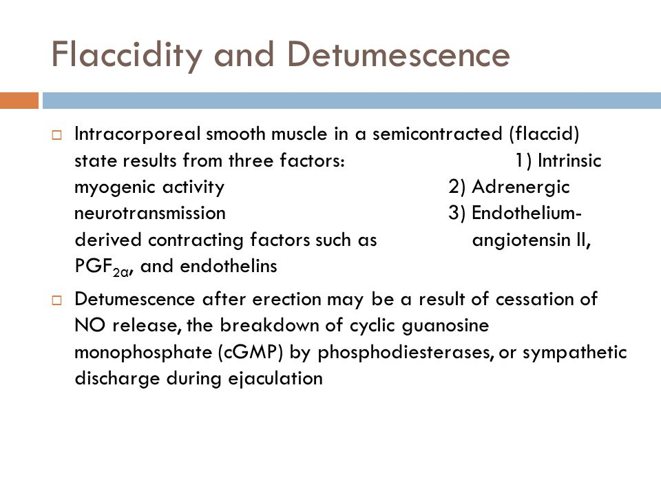 Flaccidity and Detumescence  Intracorporeal smooth muscle in a semicontracted (flaccid) state results from three factors: 1) Intrinsic myogenic activ
