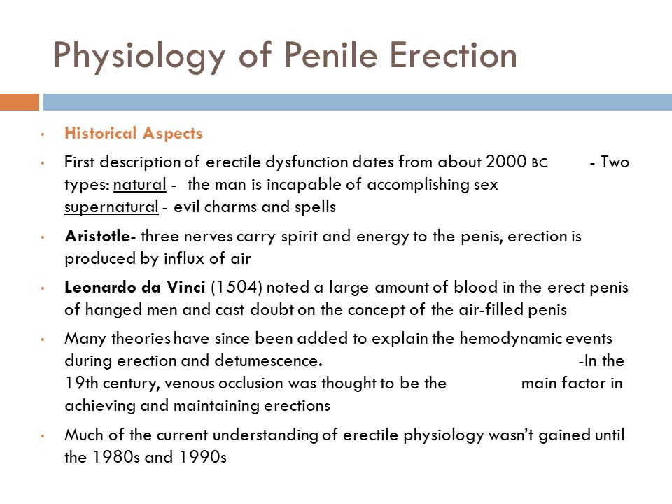 Physiology of Penile Erection Historical Aspects First description of erectile dysfunction dates from about 2000 BC - Two types: natural - the man is incapable of accomplishing sex supernatural - evil charms and spells Aristotle- three nerves carry spirit and energy to the penis, erection is produced by influx of air Leonardo da Vinci (1504) noted a large amount of blood in the erect penis of hanged men and cast doubt on the concept of the air-filled penis Many theories have since been added to explain the hemodynamic events during erection and detumescence.