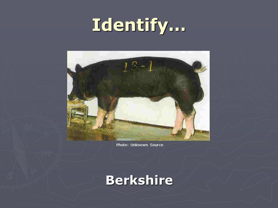 Identify… Berkshire