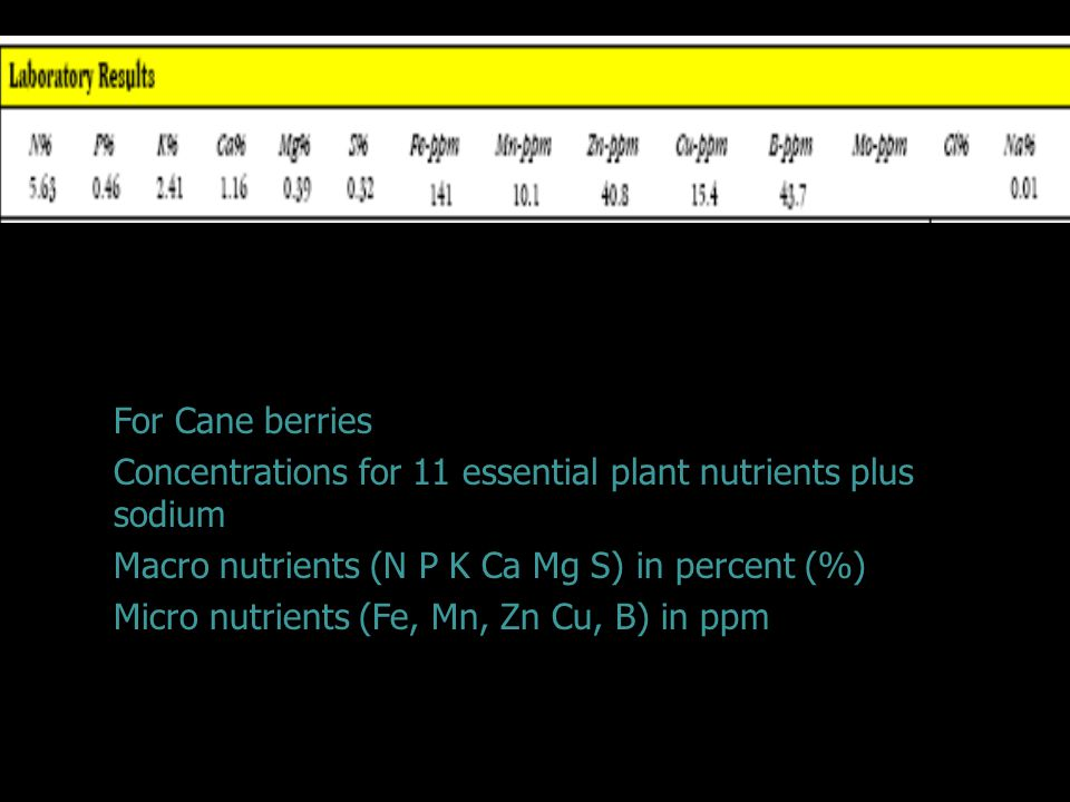 Laboratory Results For Cane berries Concentrations for 11 essential plant nutrients plus sodium Macro nutrients (N P K Ca Mg S) in percent (%) Micro nutrients (Fe, Mn, Zn Cu, B) in ppm