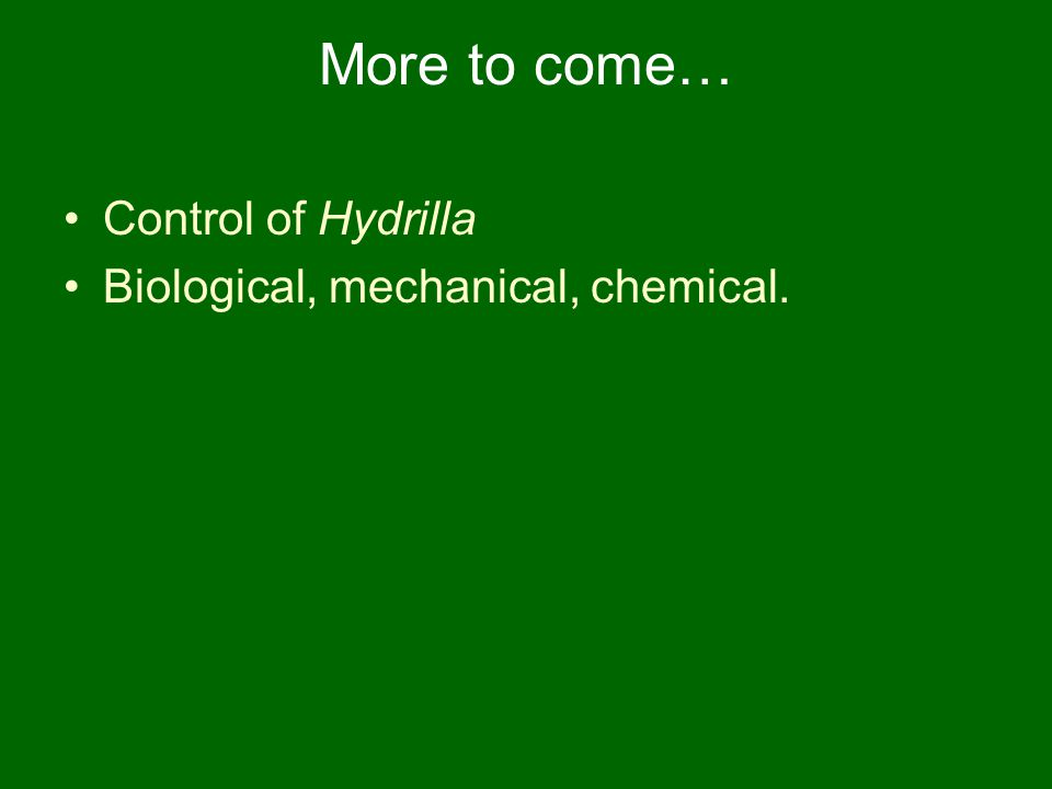 More to come… Control of Hydrilla Biological, mechanical, chemical.