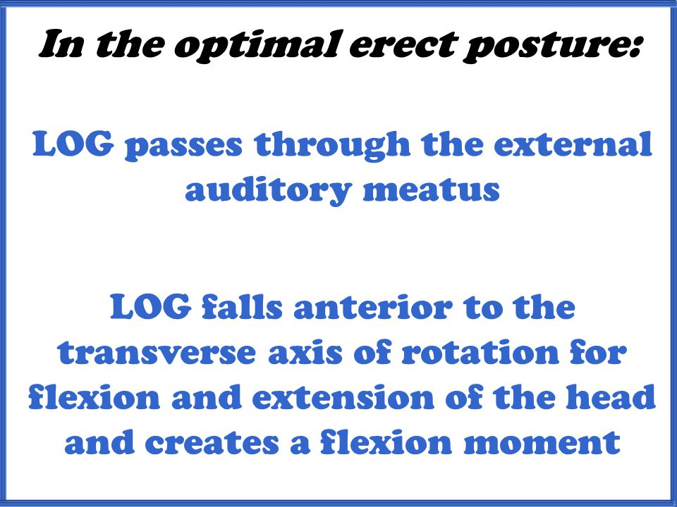 In the optimal erect posture: LOG passes through the external auditory meatus LOG falls anterior to the transverse axis of rotation for flexion and extension of the head and creates a flexion moment