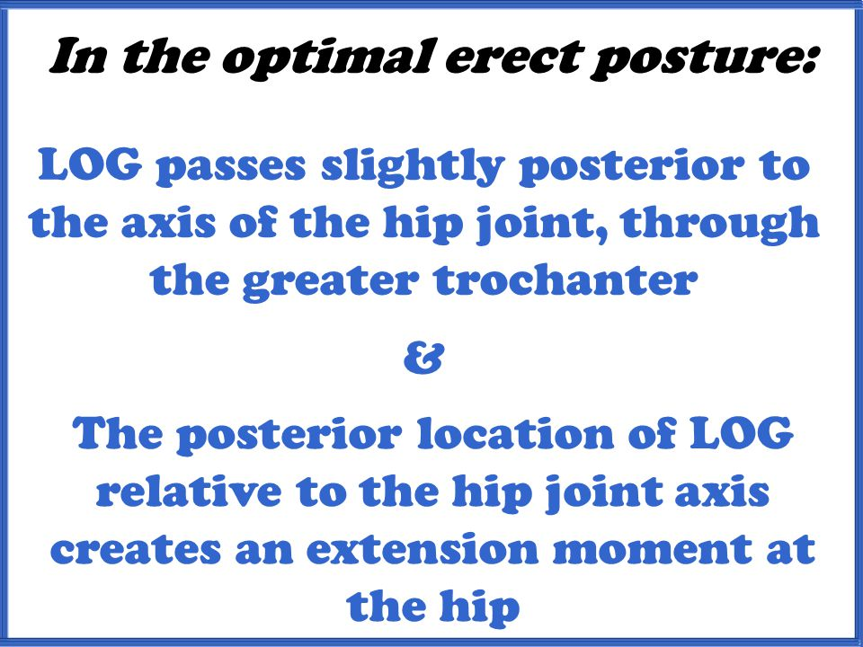In the optimal erect posture: & LOG passes slightly posterior to the axis of the hip joint, through the greater trochanter The posterior location of LOG relative to the hip joint axis creates an extension moment at the hip