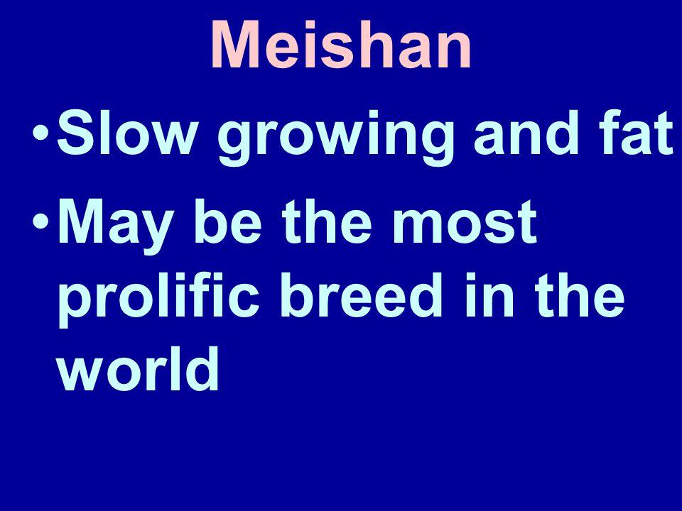 Meishan