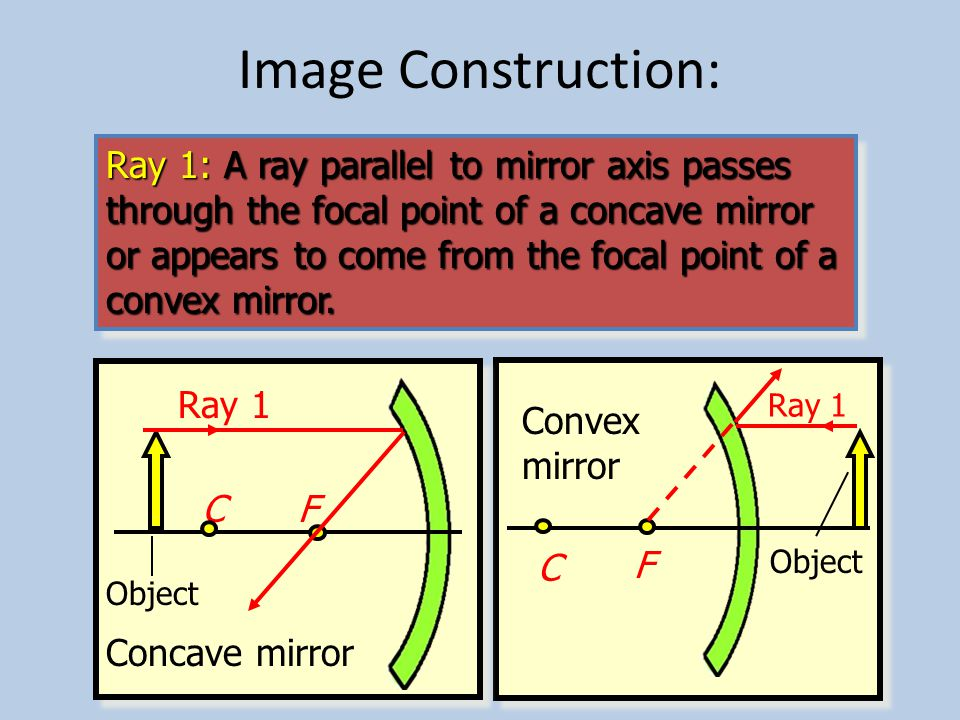 The Focus of a Convex Mirror The focal point for a convex mirror is the point F from which all parallel light rays diverge.