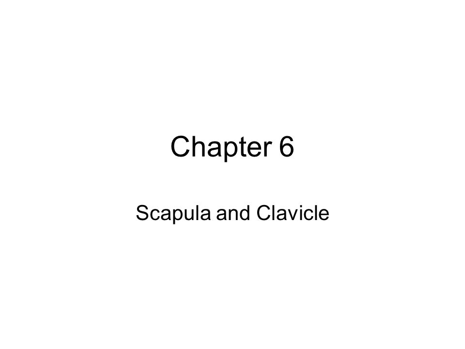 Chapter 6 Scapula and Clavicle