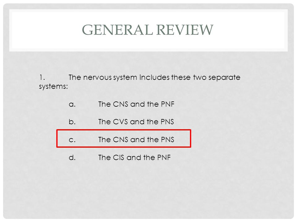 1.The nervous system includes these two separate systems: a.The CNS and the PNF b.The CVS and the PNS c.The CNS and the PNS d.The CIS and the PNF GENE