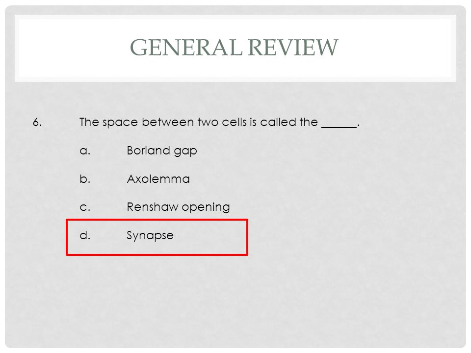6.The space between two cells is called the ______. a.Borland gap b.Axolemma c.Renshaw opening d.Synapse GENERAL REVIEW