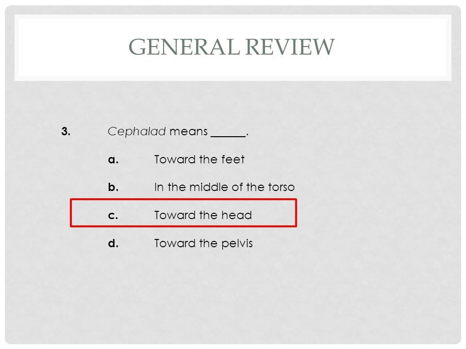 4.There are ______ pairs of nerves arising from the spinal cord. a.31 b.32 c.33 d.34 GENERAL REVIEW