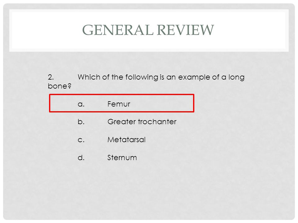 2.Which of the following is an example of a long bone? a.Femur b.Greater trochanter c.Metatarsal d.Sternum GENERAL REVIEW