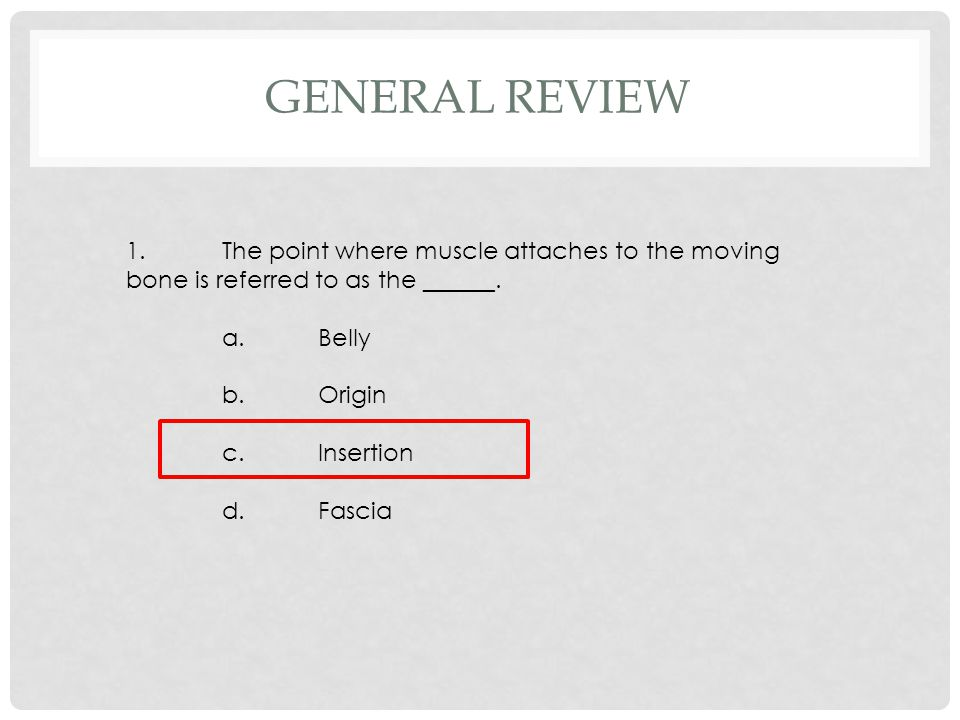 1.The point where muscle attaches to the moving bone is referred to as the ______. a.Belly b.Origin c.Insertion d.Fascia GENERAL REVIEW