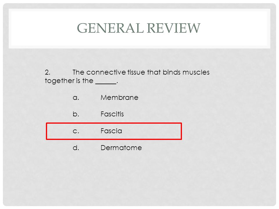 2.The connective tissue that binds muscles together is the ______. a.Membrane b.Fascitis c.Fascia d.Dermatome GENERAL REVIEW