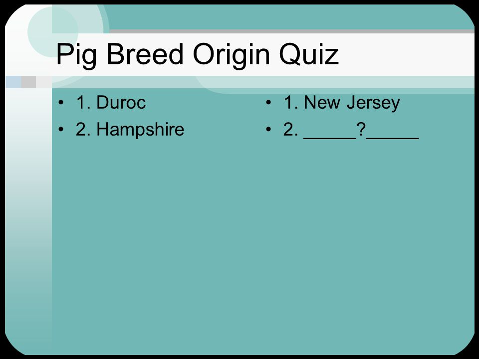 Pig Breed Origin Quiz 1. Duroc 2. Hampshire 1. New Jersey 2. _____ _____