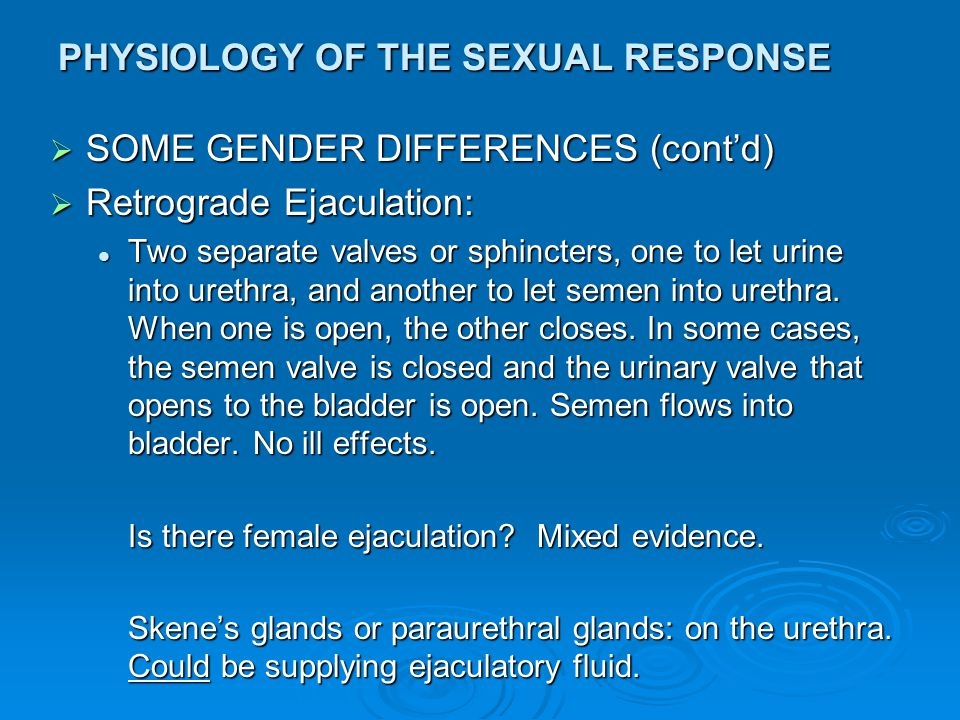 PHYSIOLOGY OF THE SEXUAL RESPONSE  SOME GENDER DIFFERENCES (cont'd)  Retrograde Ejaculation: Two separate valves or sphincters, one to let urine int