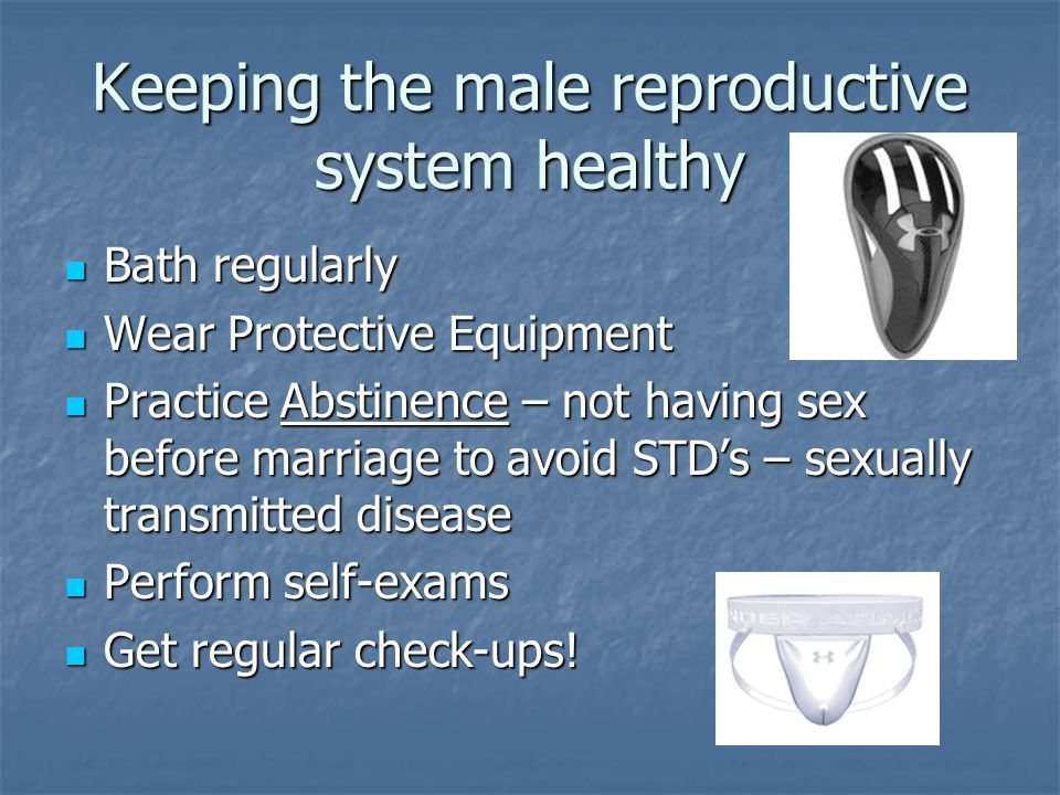 Keeping the male reproductive system healthy Bath regularly Bath regularly Wear Protective Equipment Wear Protective Equipment Practice Abstinence – n