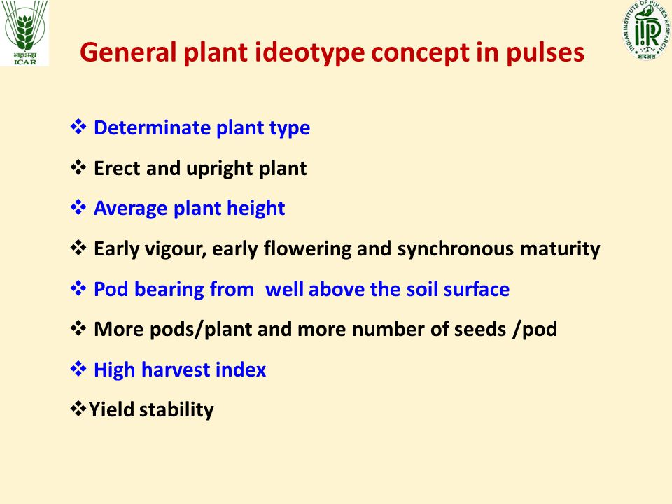 General plant ideotype concept in pulses  Determinate plant type  Erect and upright plant  Average plant height  Early vigour, early flowering and synchronous maturity  Pod bearing from well above the soil surface  More pods/plant and more number of seeds /pod  High harvest index  Yield stability