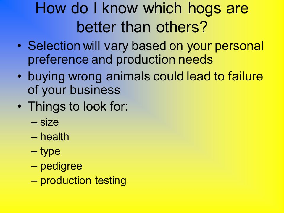 How do I know which hogs are better than others? Selection will vary based on your personal preference and production needs buying wrong animals could