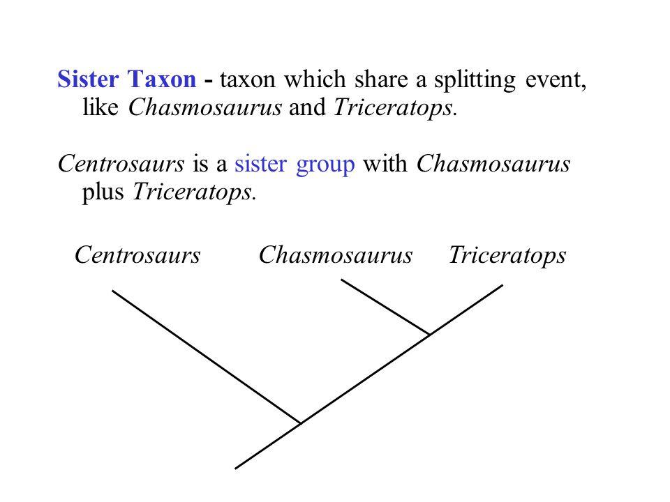 CentrosaursChasmosaurusTriceratops Sister Taxon - taxon which share a splitting event, like Chasmosaurus and Triceratops. Centrosaurs is a sister grou