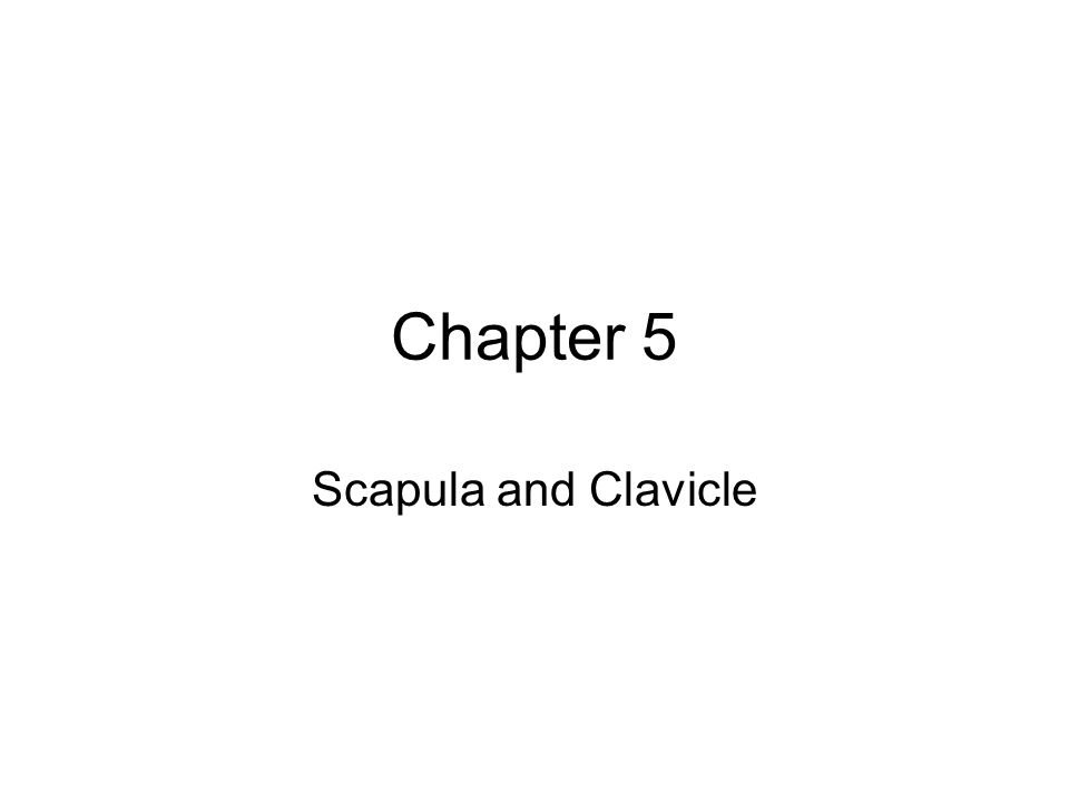 Chapter 5 Scapula and Clavicle