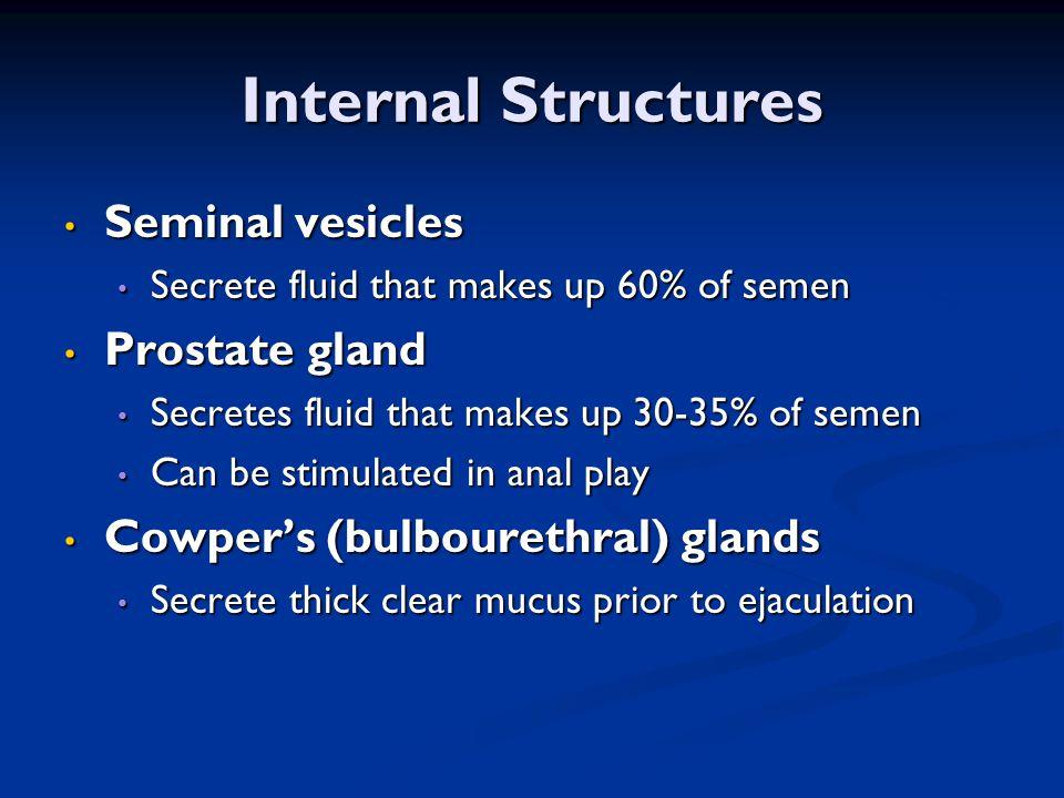 Internal Structures Seminal vesicles Seminal vesicles Secrete fluid that makes up 60% of semen Secrete fluid that makes up 60% of semen Prostate gland Prostate gland Secretes fluid that makes up 30-35% of semen Secretes fluid that makes up 30-35% of semen Can be stimulated in anal play Can be stimulated in anal play Cowper's (bulbourethral) glands Cowper's (bulbourethral) glands Secrete thick clear mucus prior to ejaculation Secrete thick clear mucus prior to ejaculation