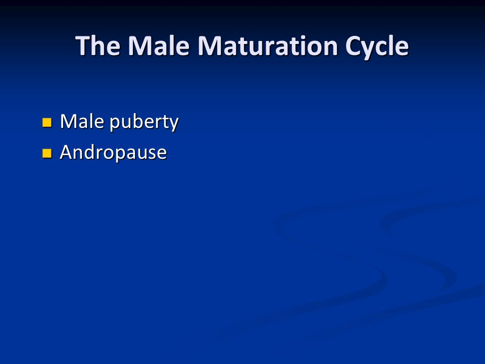 The Male Maturation Cycle Male puberty Male puberty Andropause Andropause
