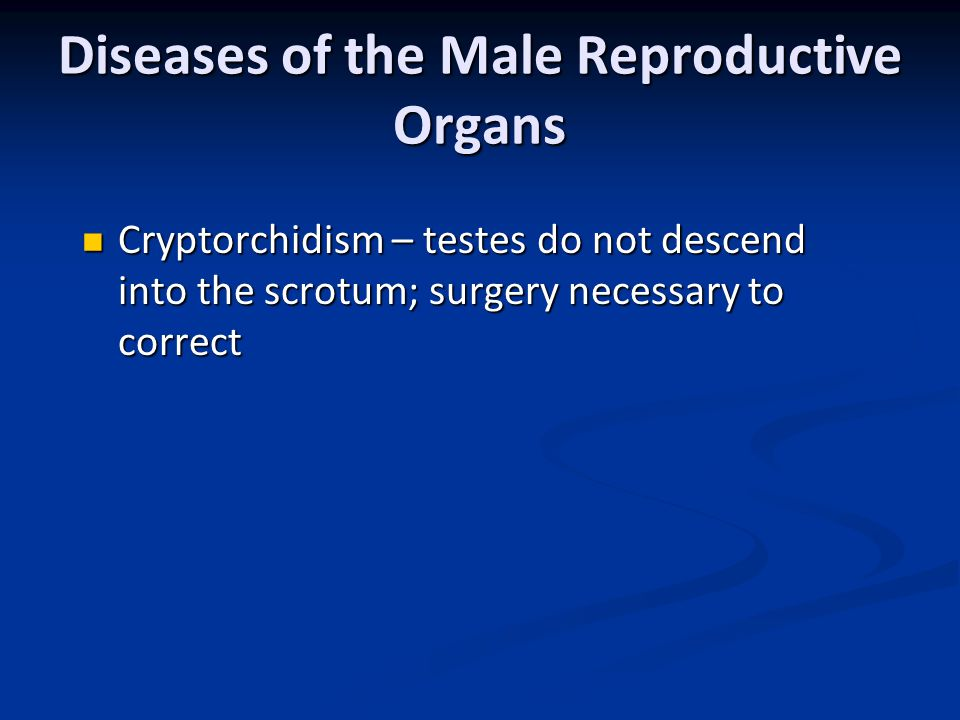 Diseases of the Male Reproductive Organs Cryptorchidism – testes do not descend into the scrotum; surgery necessary to correct Cryptorchidism – testes