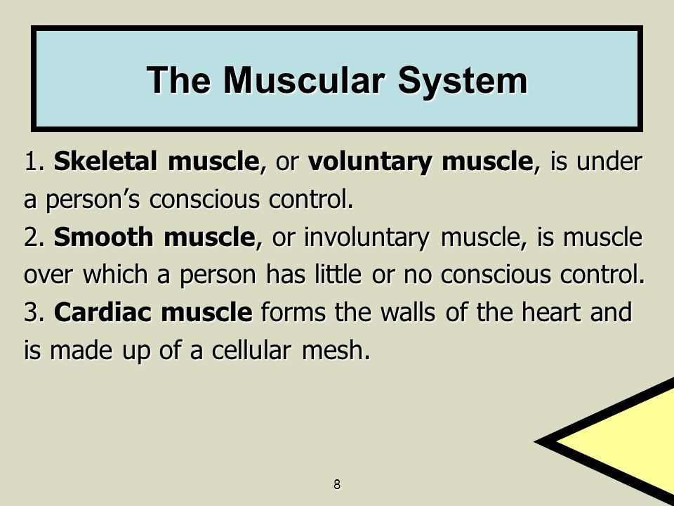 9 Vocabulary articulate- To fit into each other articulate- To fit into each other fracture- A break in the bone fracture- A break in the bone skeletal (voluntary) muscle- Muscle that is under direct voluntary control of the brain skeletal (voluntary) muscle- Muscle that is under direct voluntary control of the brain smooth muscle- The muscles found in the walls of the internal organs and blood vessels, generally not under voluntary control smooth muscle- The muscles found in the walls of the internal organs and blood vessels, generally not under voluntary control involuntary muscle- Smooth muscle over which a person has no voluntary or conscious control involuntary muscle- Smooth muscle over which a person has no voluntary or conscious control cardiac muscle- The muscle that makes up the heart cardiac muscle- The muscle that makes up the heart