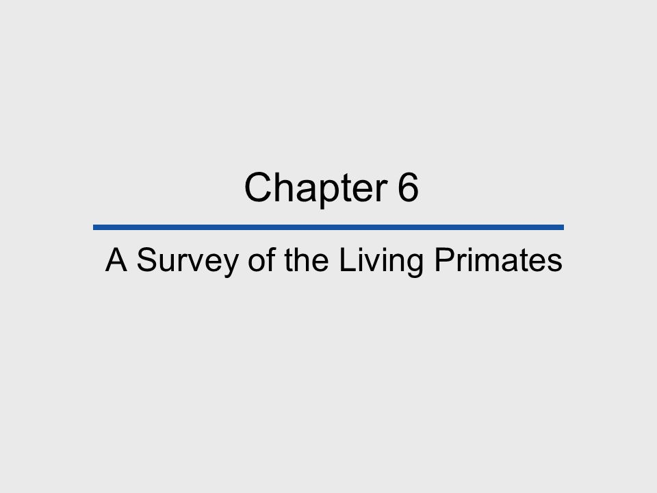 Chapter 6 A Survey of the Living Primates