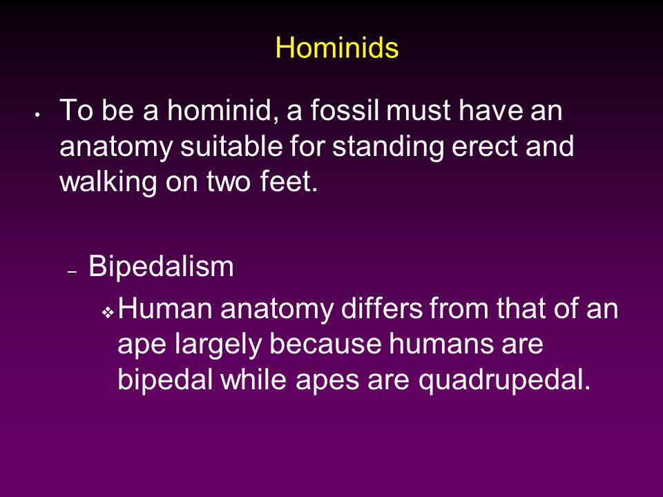 Hominids To be a hominid, a fossil must have an anatomy suitable for standing erect and walking on two feet.