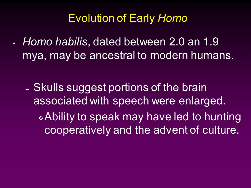 Evolution of Early Homo Homo habilis, dated between 2.0 an 1.9 mya, may be ancestral to modern humans.