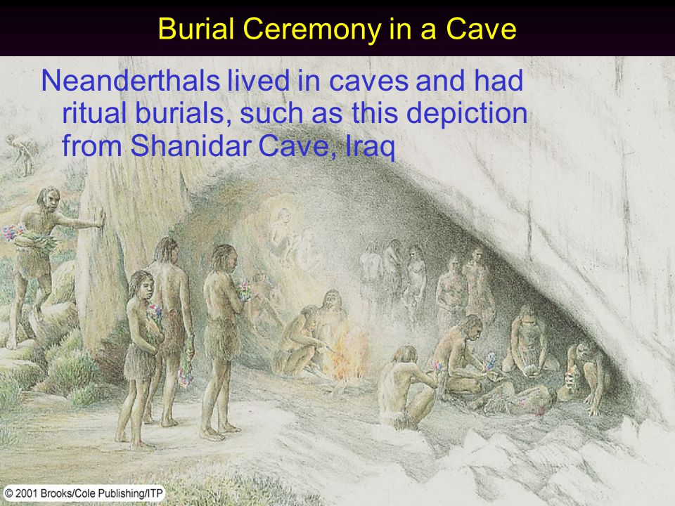 Burial Ceremony in a Cave Neanderthals lived in caves and had ritual burials, such as this depiction from Shanidar Cave, Iraq
