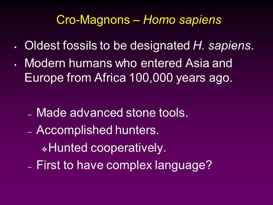 Cro-Magnons – Homo sapiens Oldest fossils to be designated H.