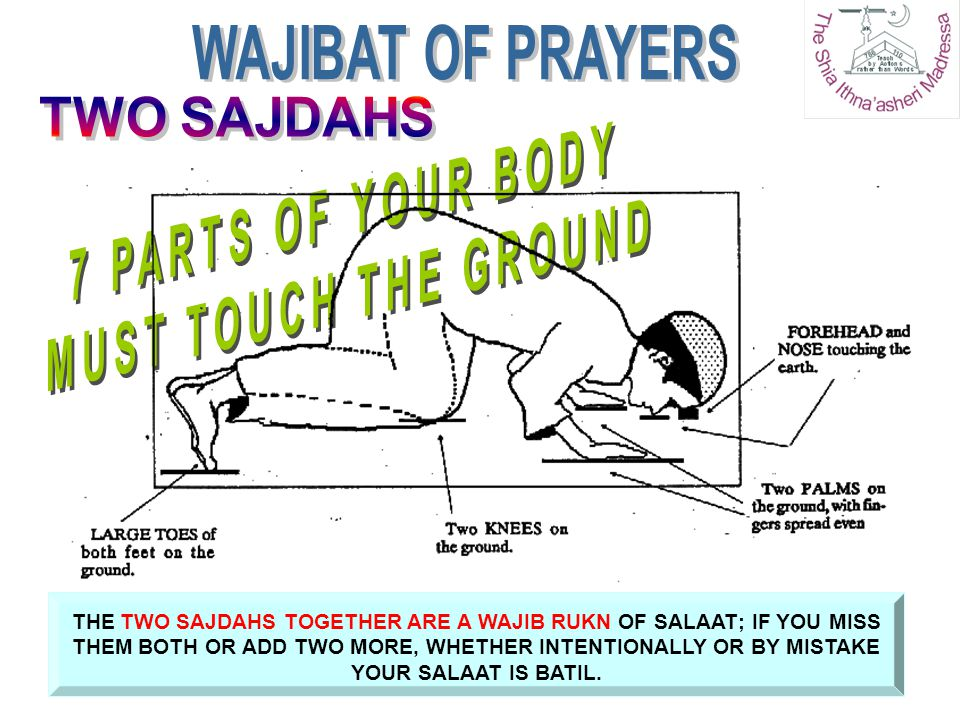 THE TWO SAJDAHS TOGETHER ARE A WAJIB RUKN OF SALAAT; IF YOU MISS THEM BOTH OR ADD TWO MORE, WHETHER INTENTIONALLY OR BY MISTAKE YOUR SALAAT IS BATIL.