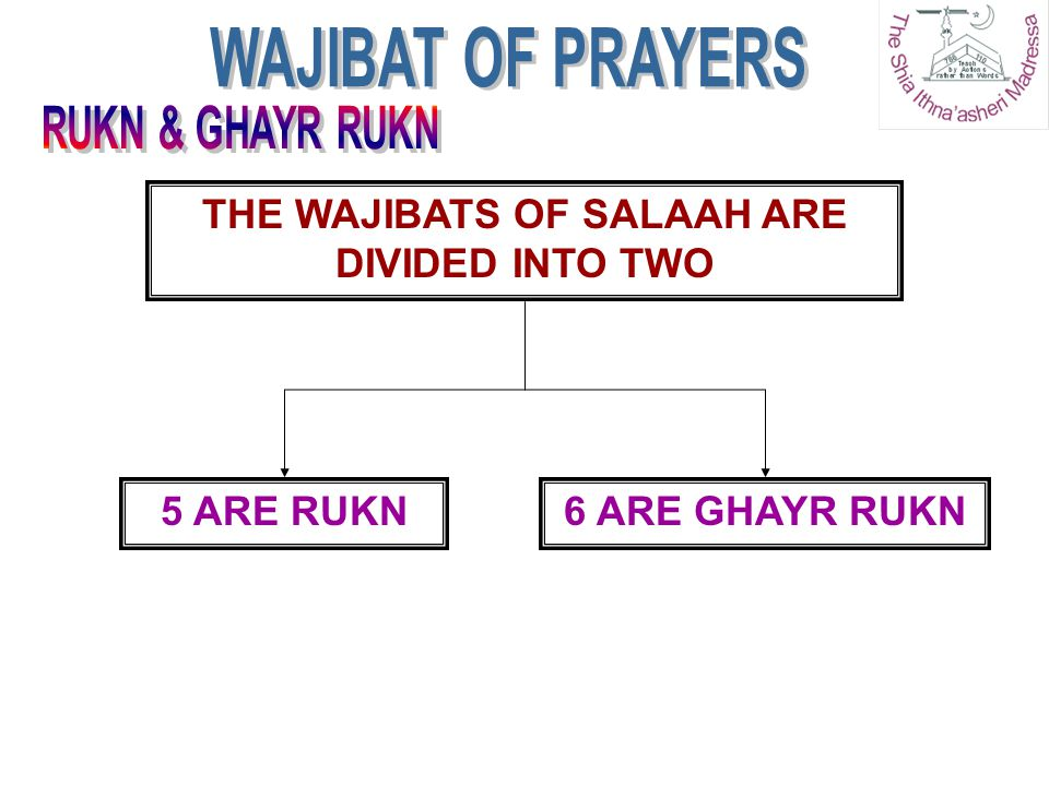THE WAJIBATS OF SALAAH ARE DIVIDED INTO TWO 5 ARE RUKN6 ARE GHAYR RUKN