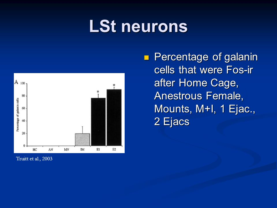 LSt neurons Percentage of galanin cells that were Fos-ir after Home Cage, Anestrous Female, Mounts, M+I, 1 Ejac., 2 Ejacs Truitt et al., 2003