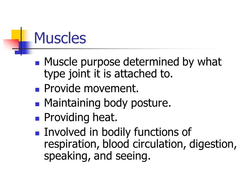 Muscles Muscle purpose determined by what type joint it is attached to.