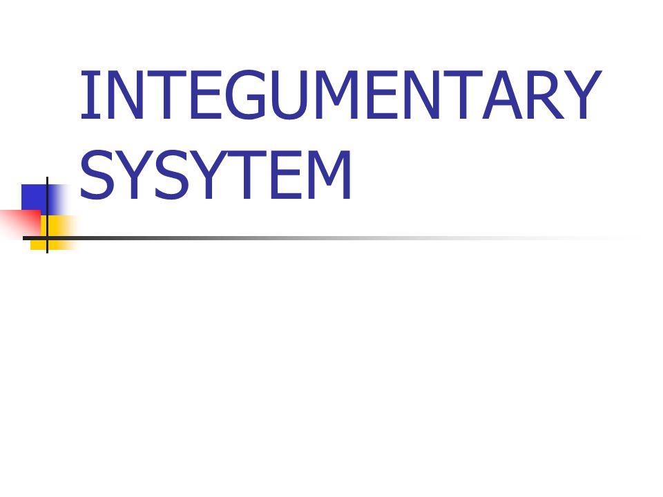 INTEGUMENTARY SYSYTEM