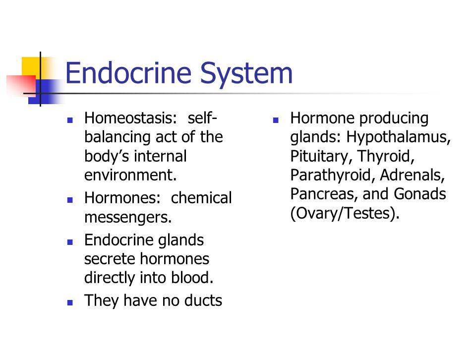 Endocrine System Homeostasis: self- balancing act of the body's internal environment.