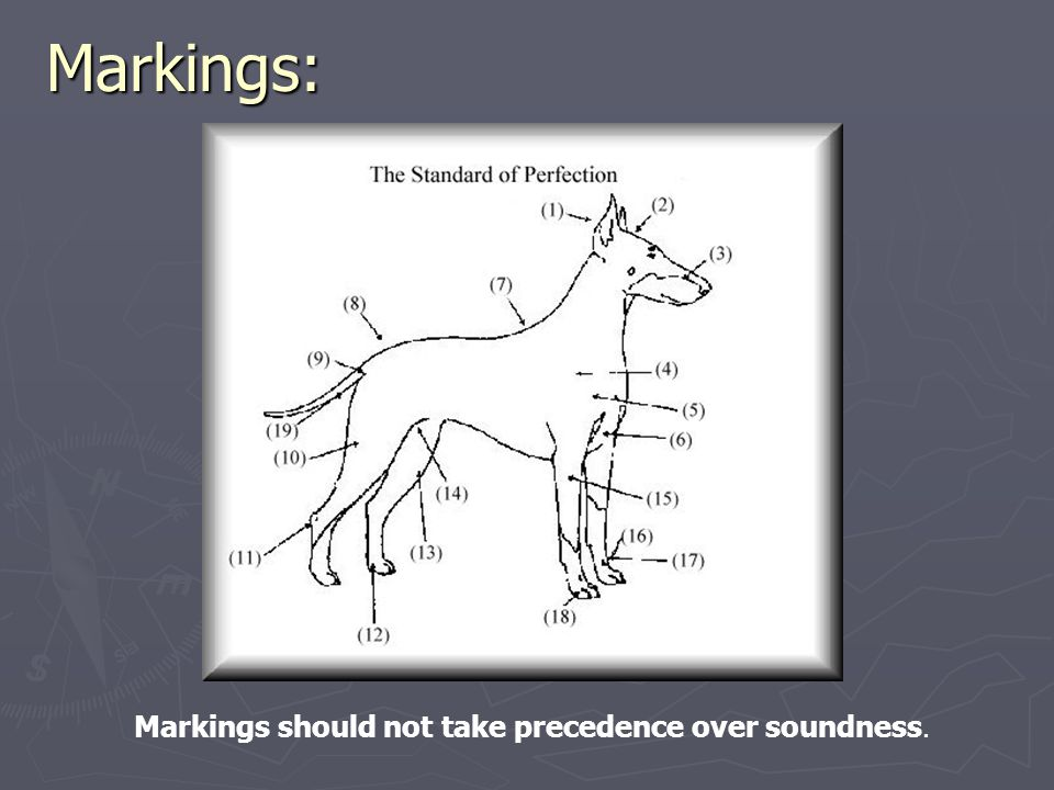 Markings: Markings should not take precedence over soundness.