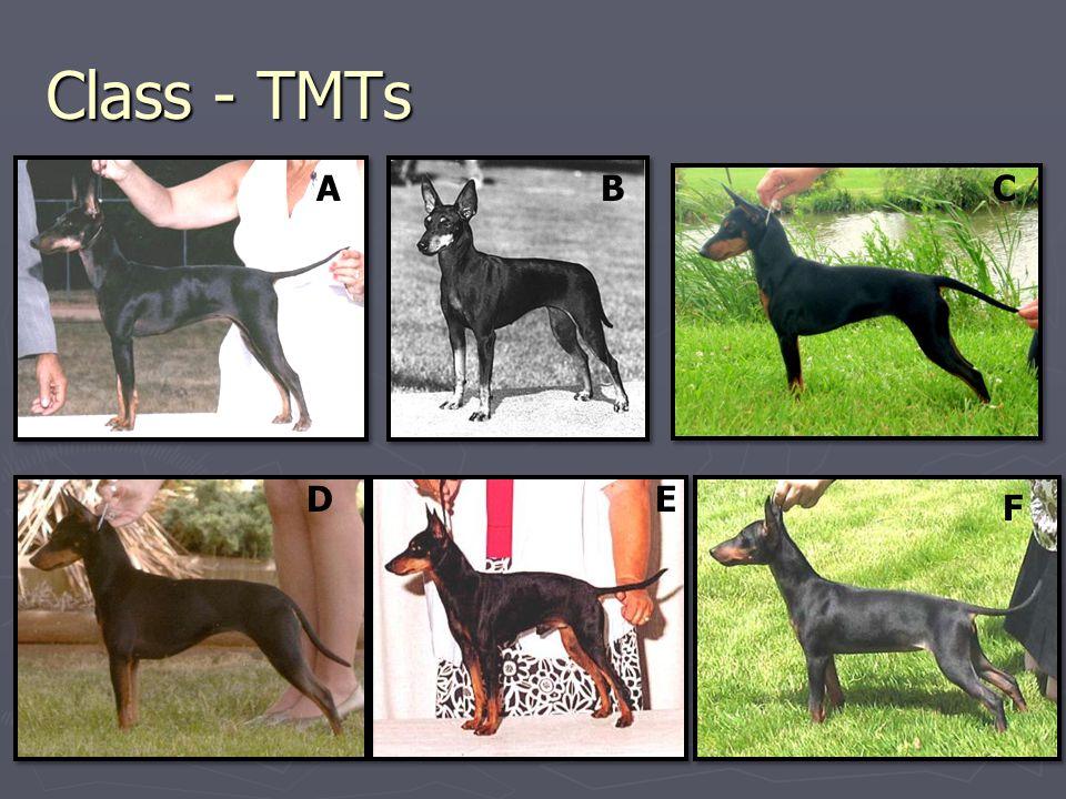 Class - TMTs ABC DE F