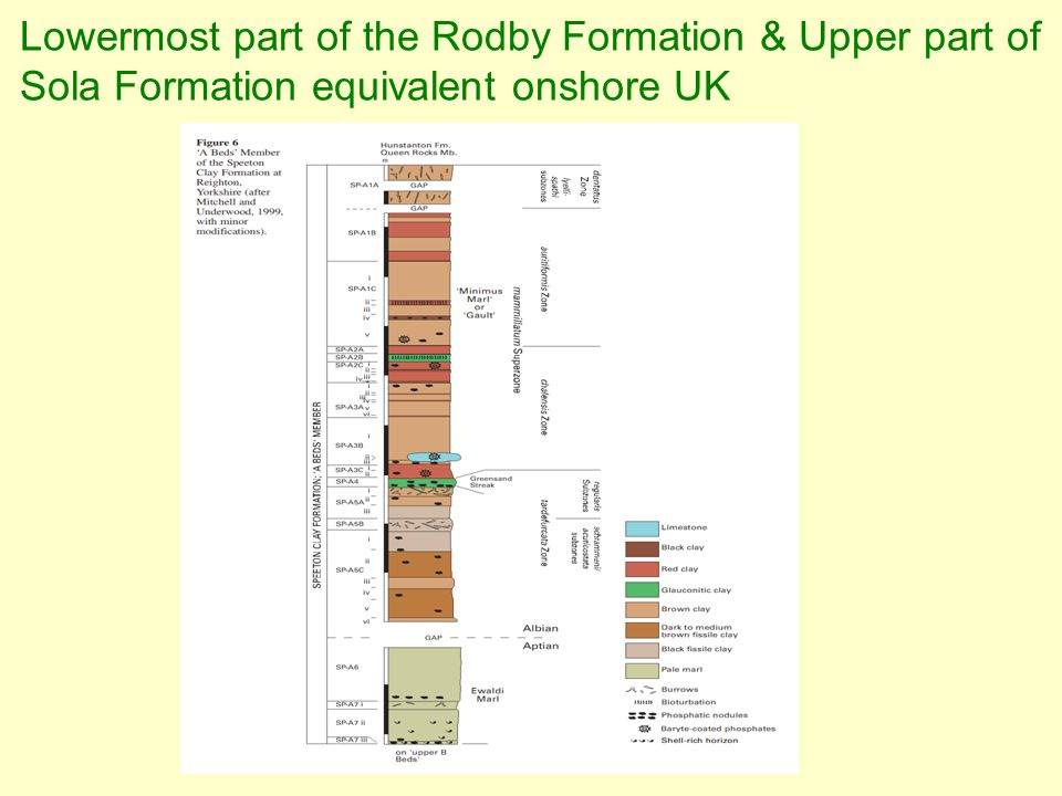 Lowermost part of the Rodby Formation & Upper part of Sola Formation equivalent onshore UK