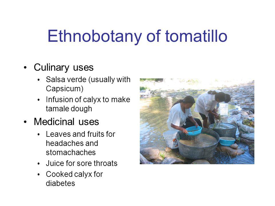 Tomatillo microsat markers