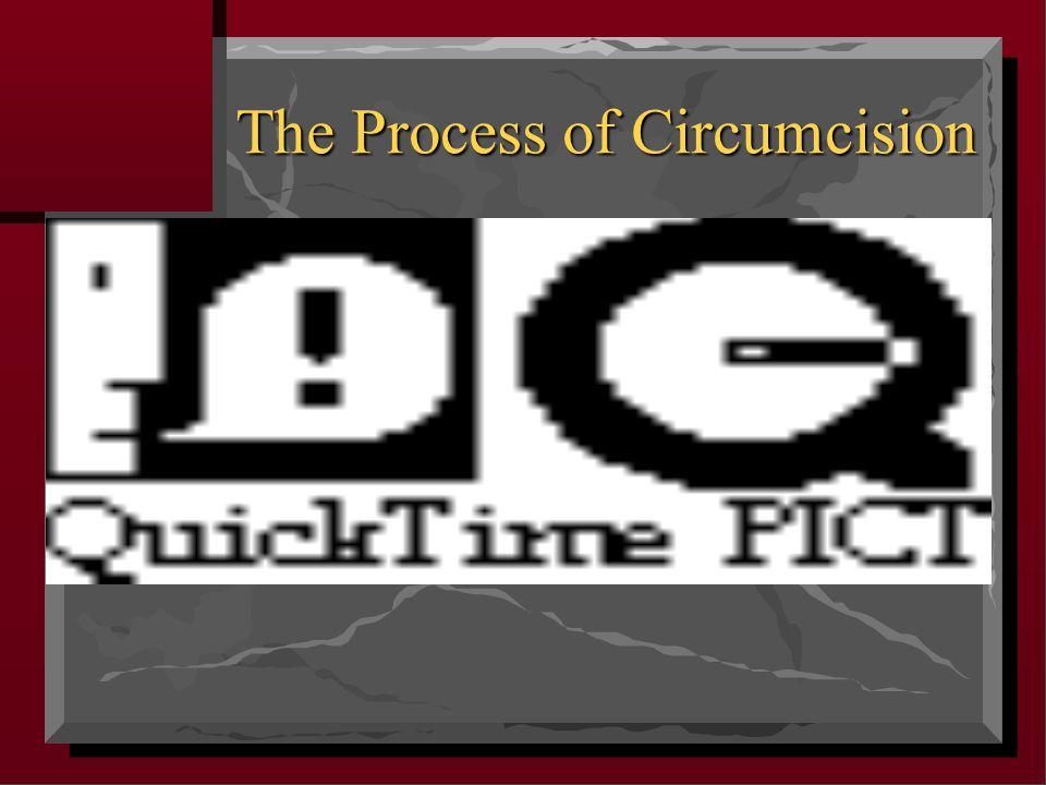 The Process of Circumcision