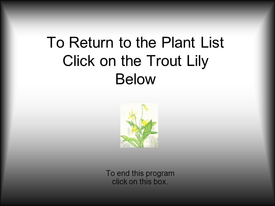 To Return to the Plant List Click on the Trout Lily Below To end this program click on this box.